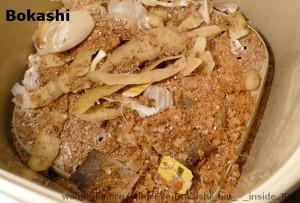 Bokashi_bin_-_inside